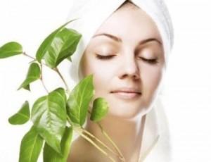 cosmeticos organicos