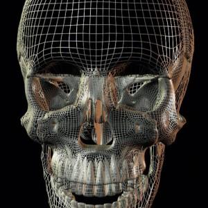 cranio-4