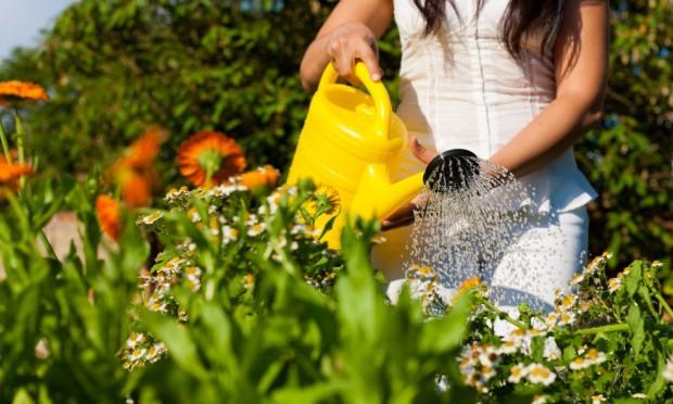 os-beneficios-da-jardinagem-3