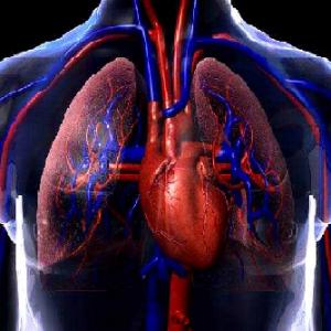 fisioterapia-pulmonar-cardiaca
