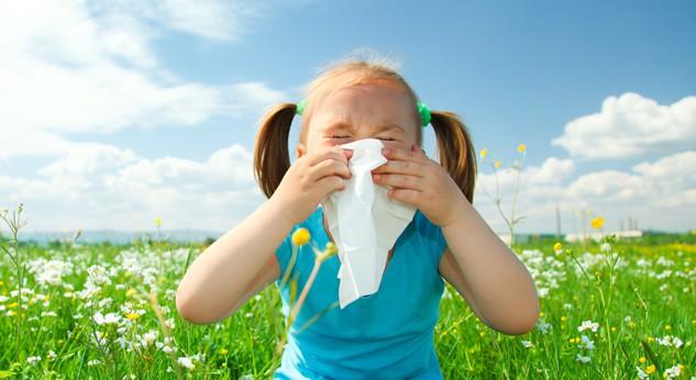 Resultado de imagem para Rinite Alérgica, Febre do Feno,