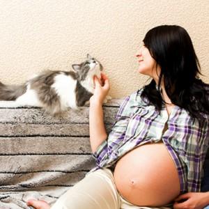 toxoplasmose na gravidez