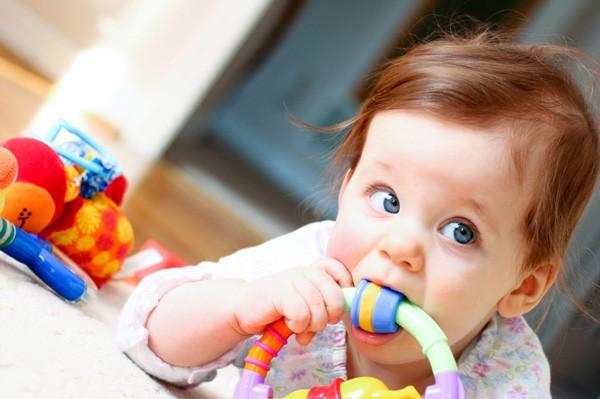 primeiros 12 meses do bebê