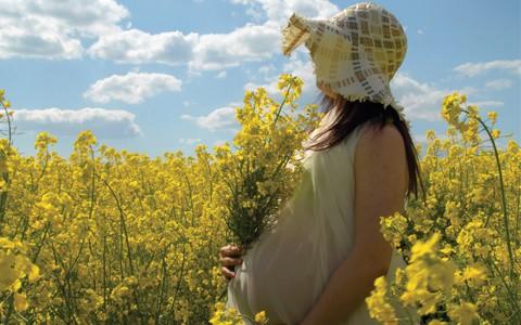 engravidar em cada estação do ano