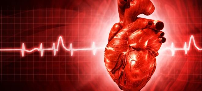 Tratamento da amiloidose cardíaca objetiva recuperar as funções do coração. Foto: Shutterstock