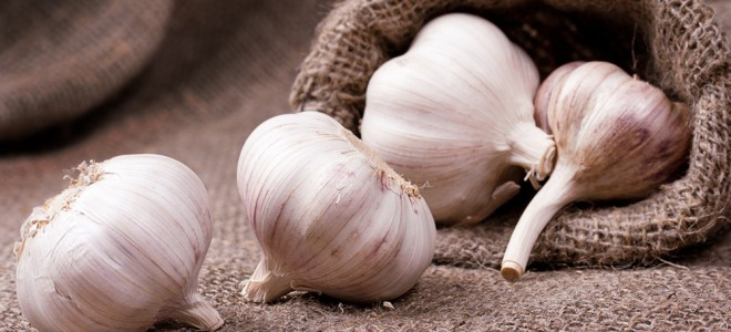 Alho pode ser usado eficazmente na prevenção e controle de doenças do coração. Foto: Shutterstock