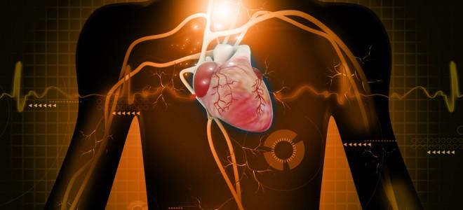 Doença é reconhecida por um sopro cardíaco, detectado na ausculta do coração. Foto: Shutterstock