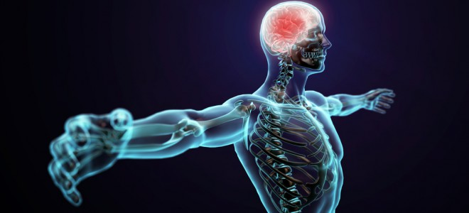Neurorradiologia intervencionista trata doenças do sistema nervoso central. Foto: Shutterstock