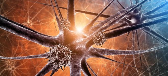 Óleo de lorenzo diminui o risco de desenvolvimento da doença degenerativa. Foto: Shutterstock