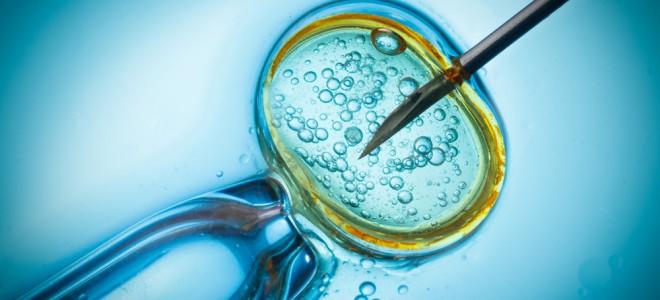 Por meio da FIV, é possível detectar aproximadamente 6.000 tipos de doenças. Foto: Shutterstock