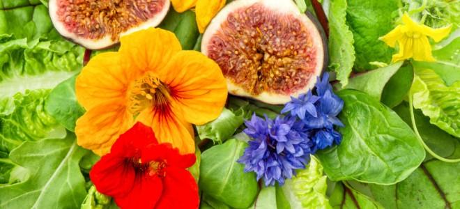 flores-na-alimentacao