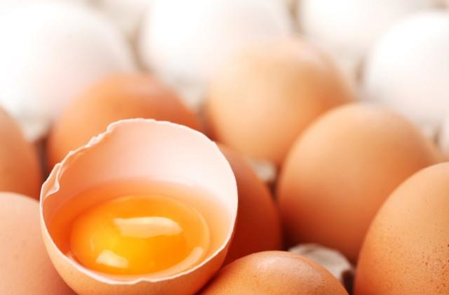 alergia ao ovo