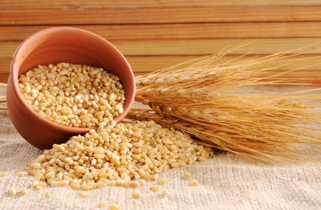 alimentos ricos em proteínas trigo