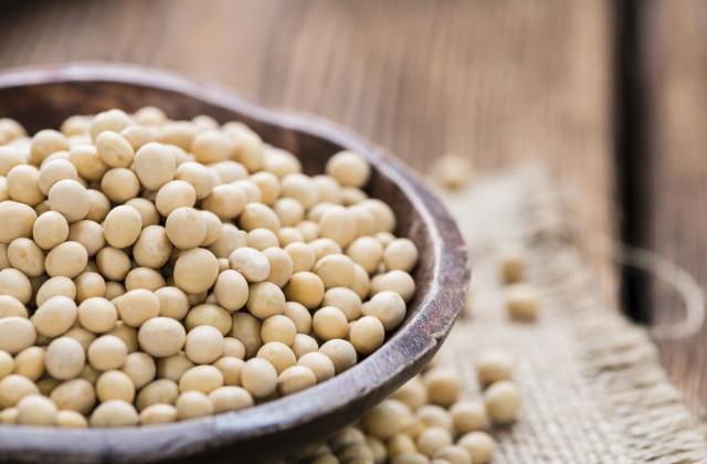 alimentos ricos em proteínas soja