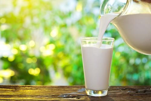 O cálcio presente no leite e seus derivados ajuda a manter o gasto energético do corpo. Foto: Shutterstock
