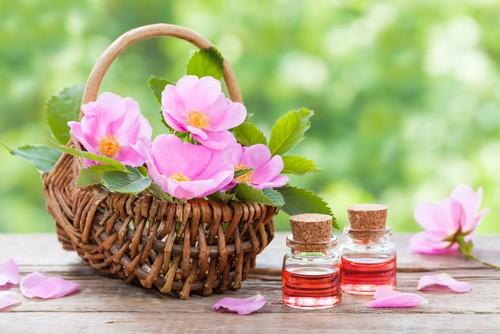 O óleo de rosa mosqueta ajuda a suavizar as manchas na pele e melhora a cicatrização. Foto: Shutterstock