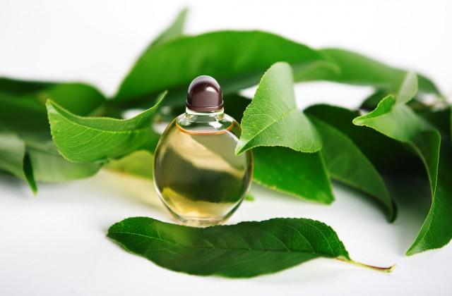 tipos de perfume shutterstock doutissima 03