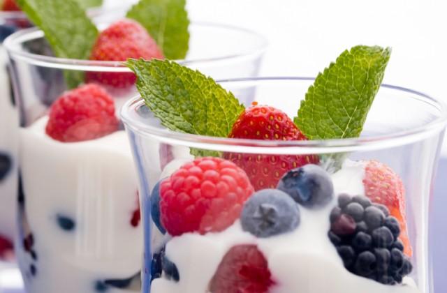 alimentos probioticos