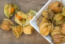 frutas exóticas doutíssima istock getty images Physallis