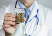 maconha medicinal istock getty images doutíssima