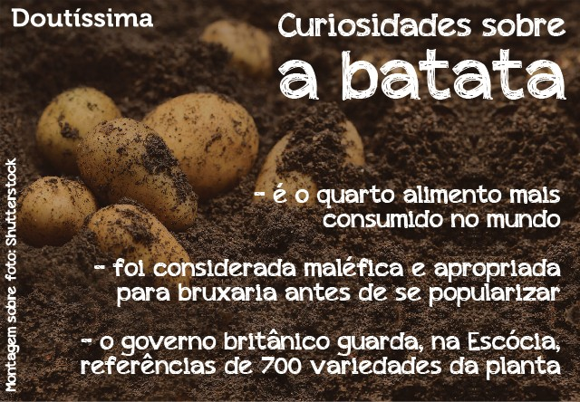batata chips light infográfico doutíssima
