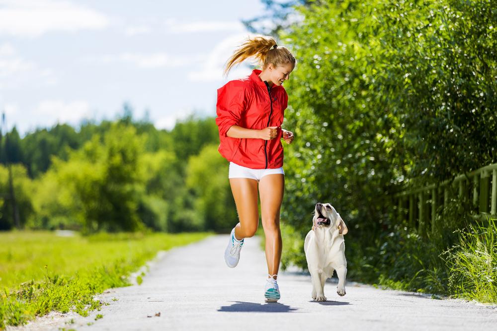 dog fitness-doutissima-shutterstock
