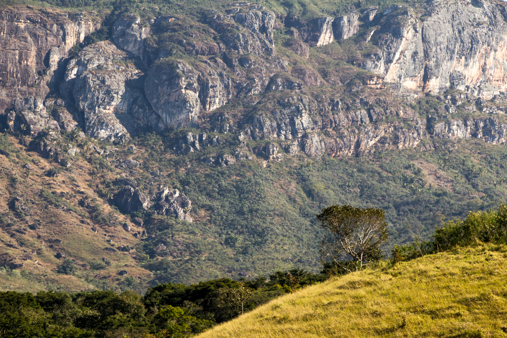 Monte Verde-shutterstock-doutíssima