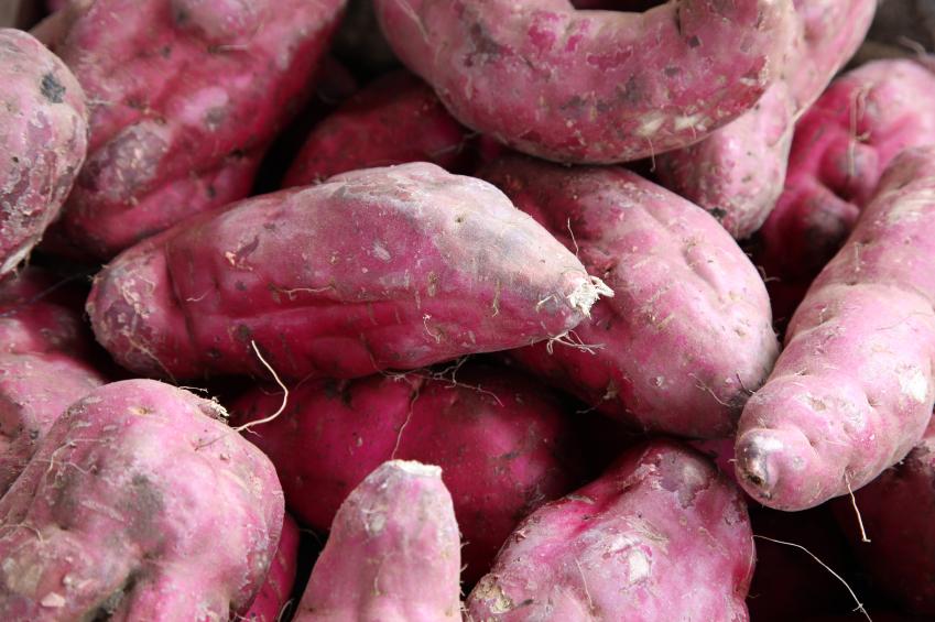 O amido resistente está presente em alimentos como a batata doce e a banana verde. Foto: iStock, Getty Images